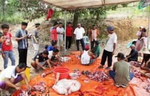 H. Lis Darmansyah, SH, Walikota Tanjungpinang, meninjau pemotongan hewan Qurban, (24/09).