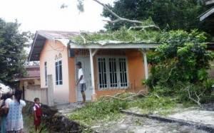 Inilah sebuah rumah yang rusak akibat tertimpa pohon di Jalan Pompa Air Km 2,5 Kota Tanjungpinang, Senin (29/2)
