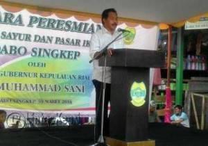 Wakil Gubernur Kepri, Nurdin Basirun