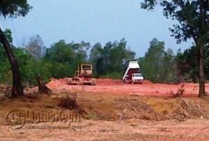 Aktivitas penimbunan hutan Mangrove di Tokojo, Kelurahan Kijang Kota, Kecamatan Bintan Timur