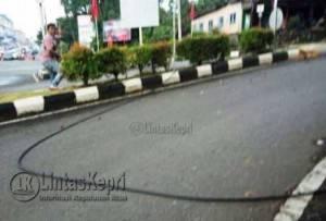 Kabel yang putus akibat tertimpa pohon di Kilometer 6 Kota Tanjungpinang