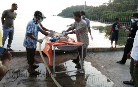 Inilah mayat tanpa yang sulit dikenali yang ditemukan oleh nelayan di Kecamatan Tambelan